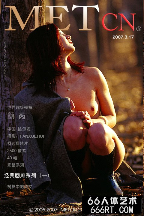 《树林中的美人》颜芮07年3月17日作品